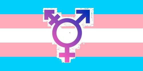 Dia Internacional de la Identitat Transgènere