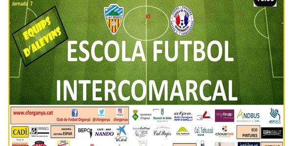 PARTIT DE FUTBOL (ALEVINS) CF ORGANYÀ I ESCOLA FUTBOL INTERCOMARCAL