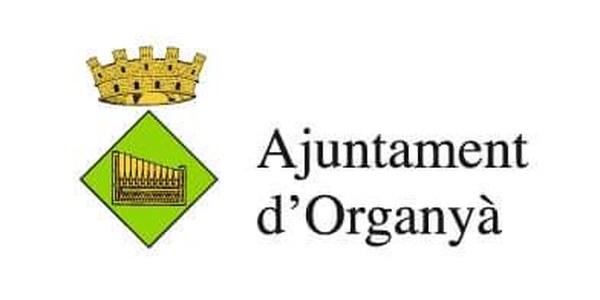 Sessió extraordinària del Ple de l'Ajuntament
