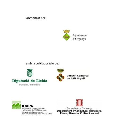 Organització i col•laboracions