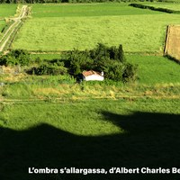L'OMBRA S' ALLARGASSA   ALBER CHARLES BERNIS.jpg