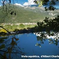 VISTA AQUATICA    ALBERT CHARLES BERNIS.jpg